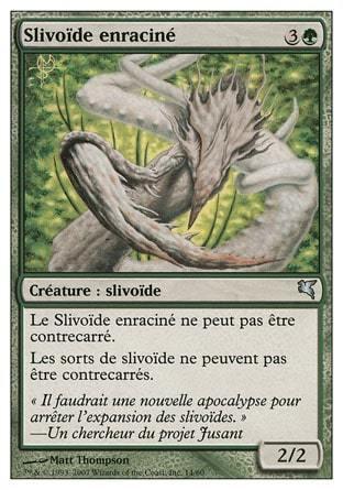 Slivoïde enraciné (Root Sliver) #14/60