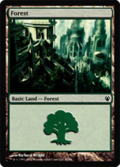Forest (90)