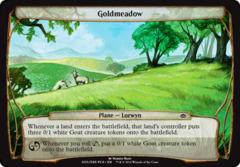 Goldmeadow - Oversized