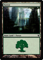 Forest (87)