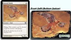 Suntail Hawk - 8th Edition Box Topper