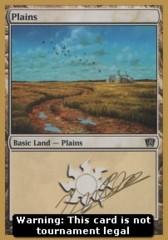 Plains (Version 1)