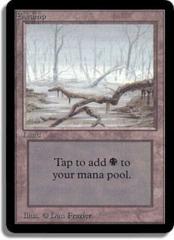 Swamp (B) [Bottom Branch From Right]
