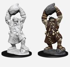 Pathfinder Deepcuts - Ogre
