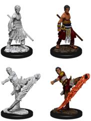 D&D Nolzur's Marvelous Miniatures - Male Half-Elf Monk (Wave 10)