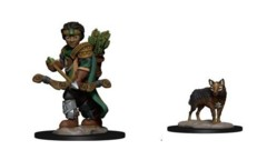 Wizkids Pre-Painted Miniatures: Boy Ranger & Wolf