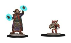 Wizkids Pre-Painted Miniatures: Boy Wizard & Imp