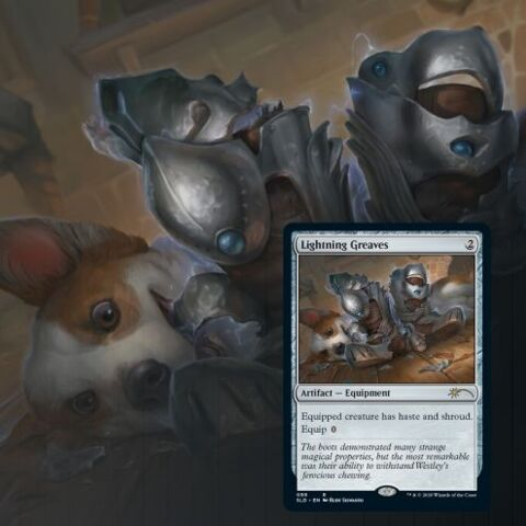 Secret Lair - Every Dog Has Its Day - Foil