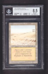 Elephant Graveyard BGS 8.5 NM-MT+ - Arabian Nights MTG Magic Graded Card