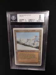 Taiga BGS 8 NM-MT 3rd Edition / Revised MTG Magic Graded Card