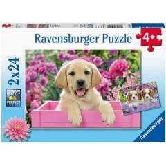 PUZZLE 2x24 ME AND MY PAL