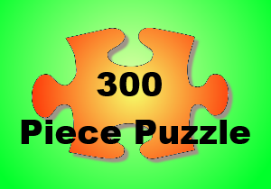 300puzzle