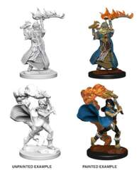 Pathfinder Battles Unpainted Minis - Human Female Cleric