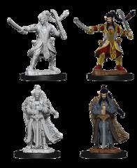 Nolzur's Marvelous Miniatures - Male Half-Elf Paladin