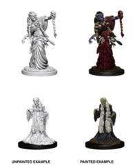 Nolzur's Marvelous Miniatures - Green Hag & Night Hag