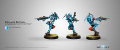 Crusader Brethren (Multi Rifle + Light Ft) (296)