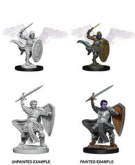 Nolzur's Marvelous Miniatures - Aasimar Male Paladin