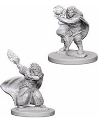 D&D Nolzur's Marvelous: Dwarf Wizard Female