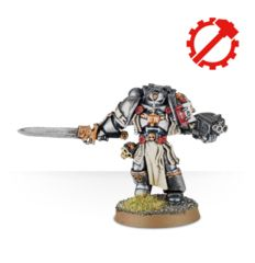 Grey Knight Brotherhood Champion