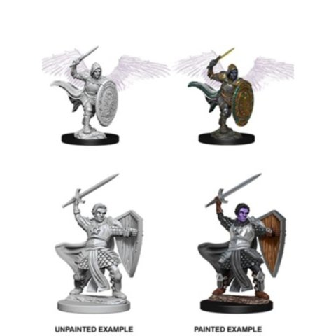Nolzurs Marvelous Miniatures - Aasimar Male Paladin