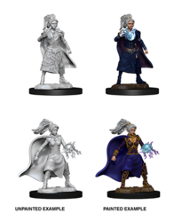 Nolzur's Marvelous Unpainted Miniatures - Female Human  Sorcerer