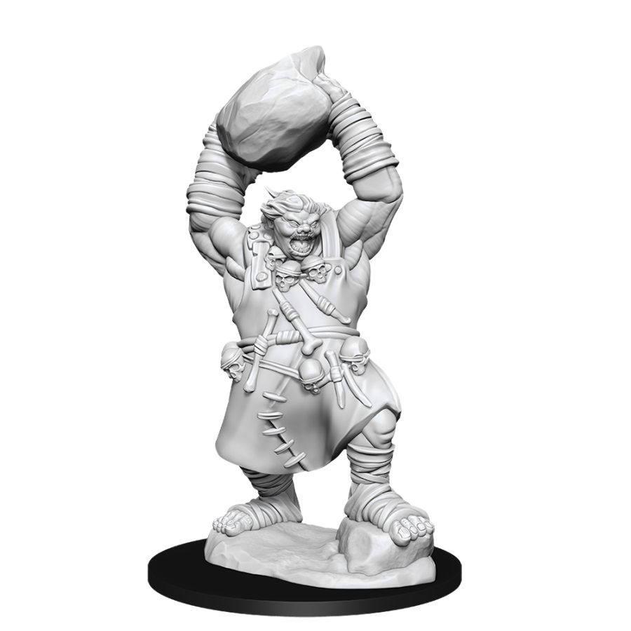 Pathfinder Deep Cuts Unpainted Miniatures: W11 Ogre