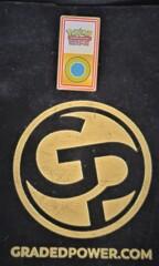Pokemon League Johto Region Olvine City Gym Badge 2001 Pin