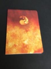 Red Mana Symbol Pocket Journal (1) NEW