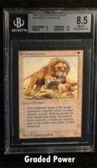 Savannah Lions  8.5  (9743)