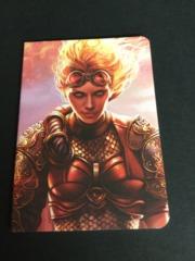 Chandra Pocket Journal (1) NEW