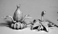 Dark Heaven: Bones Death Star Lilies (2) 77504