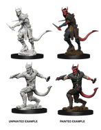 Nolzur's Marvelous Miniatures - Tiefling Male Rogue