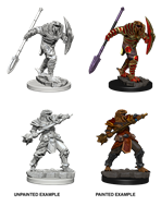 D&D Unpainted Minis - Dragonborn Male Fighter Varia