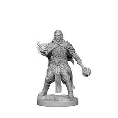 Pathfinder Battles Unpainted Minis - Human Male Cleric