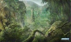 Jason Engle - Forest