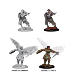 D&D Unpainted Minis - Male Aasimar Fighter