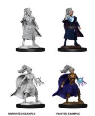 D&D Unpainted Minis - Human Female Sorcerer