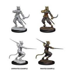 D&D Unpainted Minis - Tabaxi Male Rogue