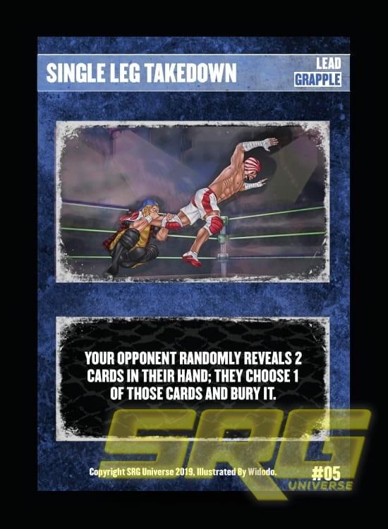 05 - Single Leg Takedown