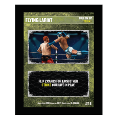 16 - Flying Lariat
