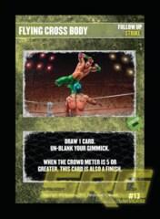 13 - Flying Cross Body