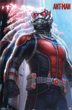 Ant Man Large Framed Art