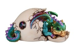 Dragon Laying Down in Egg