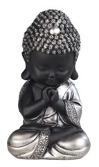 Black Buddha Praying
