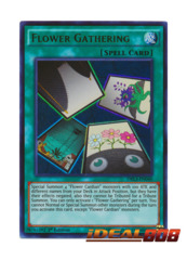 Flower Gathering - DRL3-EN040 - Ultra Rare - 1st Edition