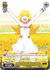 Flower Garden Shinobu Oshino [NM/S24-E011 U] English
