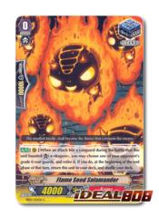 Flame Seed Salamander - EB09/035EN - C