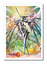 Bushiroad Cardfight!! Vanguard Campaign Sleeves (53ct) - Genesis Dragon, Excelics Messiah