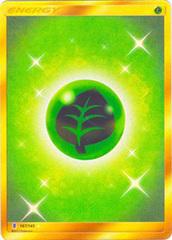 Grass Energy  - 167/145 - Secret Rare