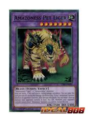 Amazoness Pet Liger - CIBR-EN094 - Common - 1st Edition